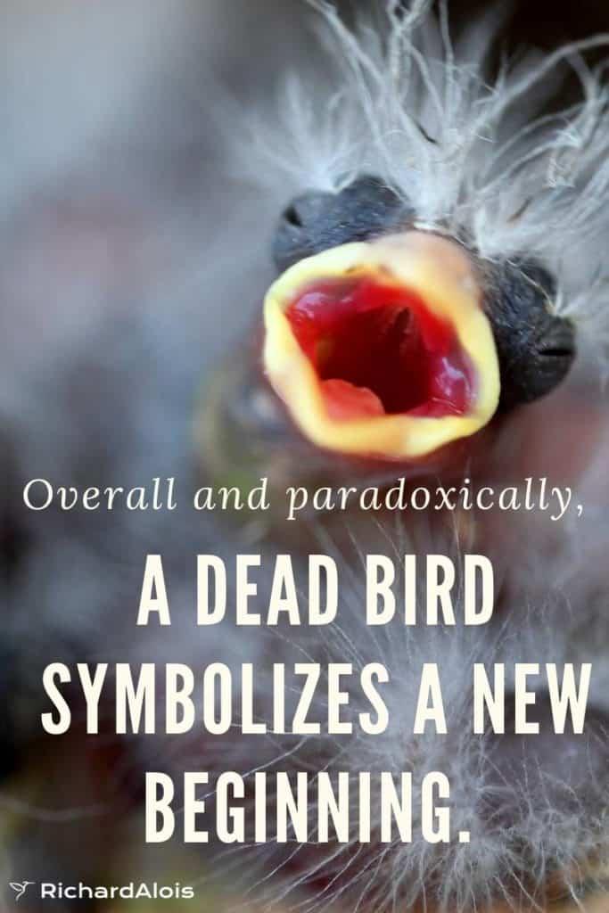 Dead Bird New Beginning