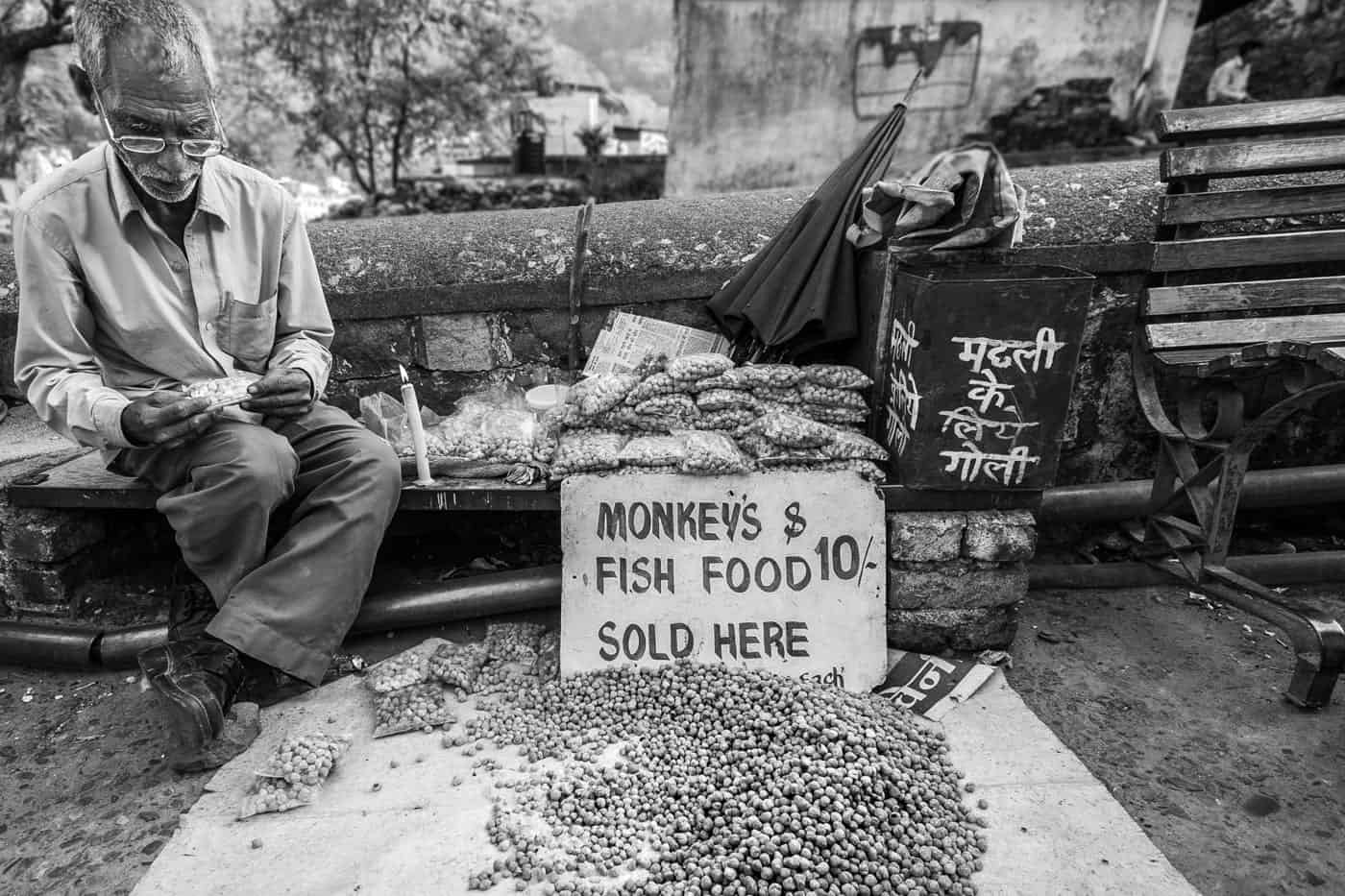 Monkey & Fish Food Rishikesh