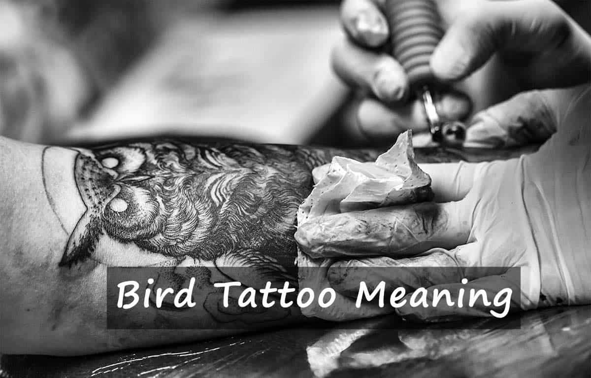 Bird Tattoo Meaning The Ultimate Guide For Your Perfect