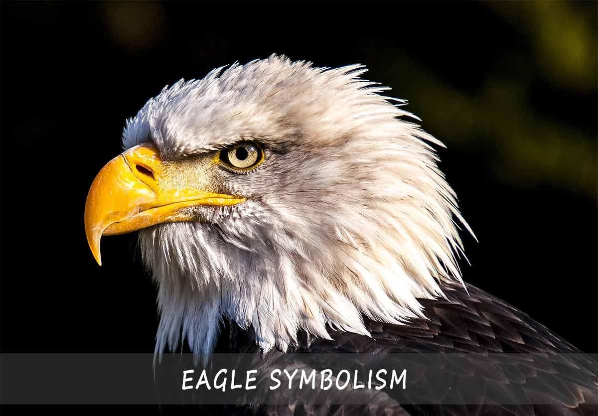 Eagle Symbolism