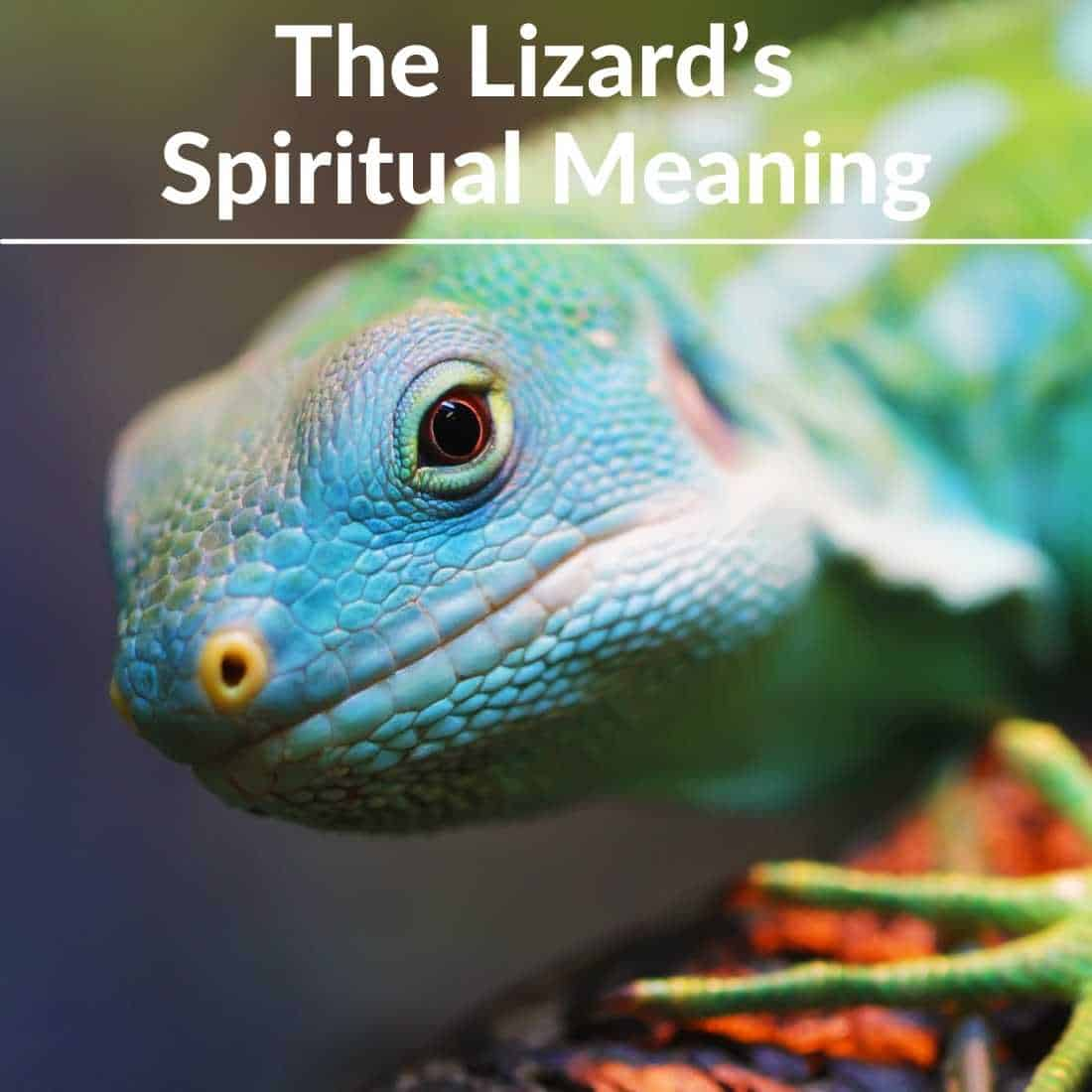 The Lizards Spiritual Meaning
