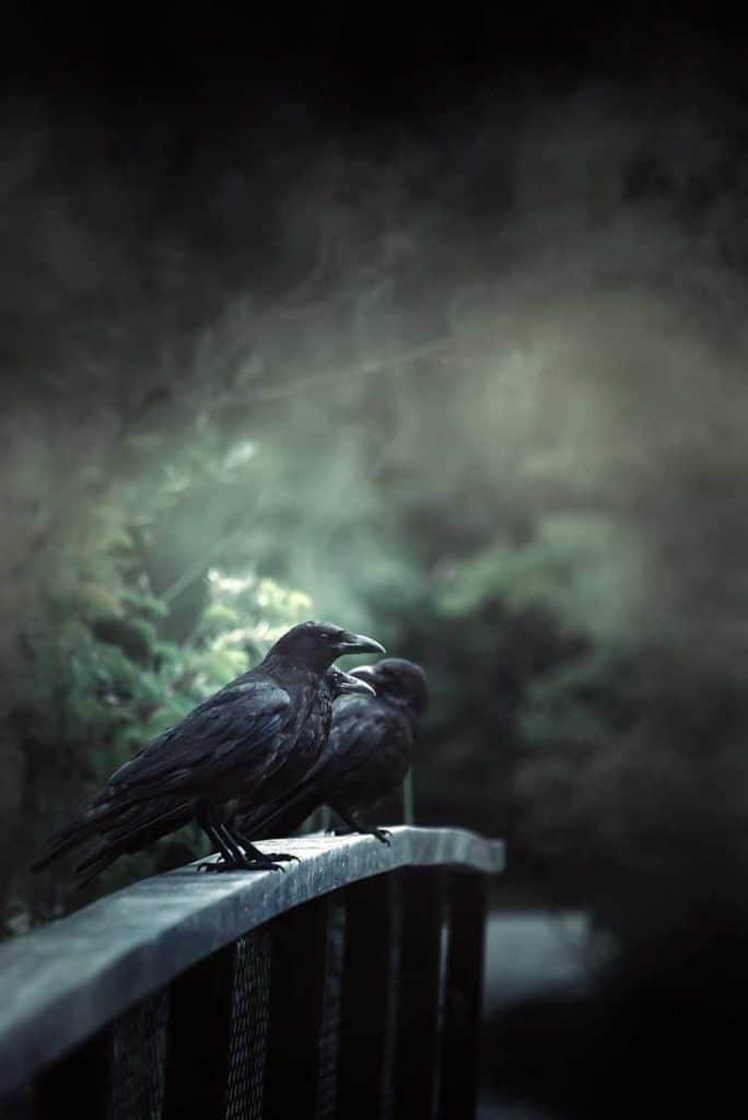 raven-totem