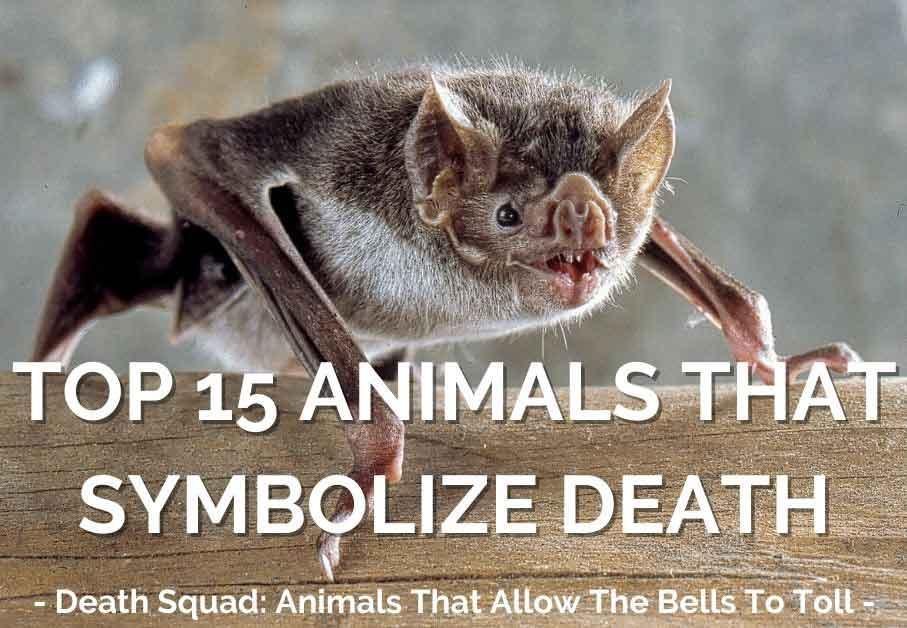 Animals Symbolizing Death
