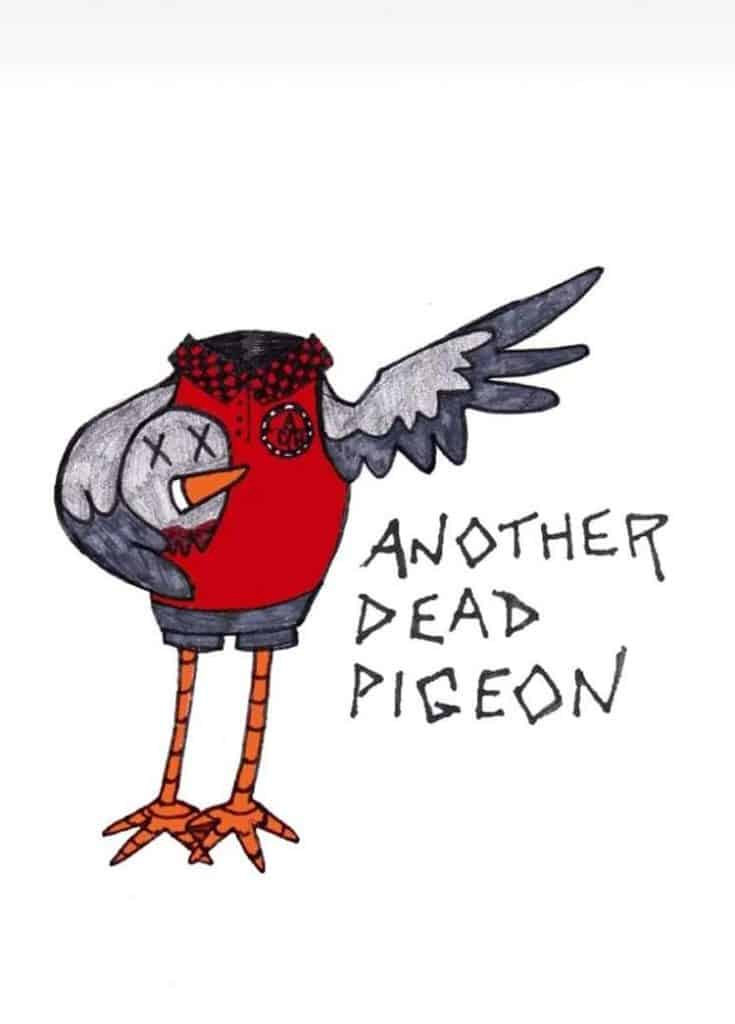 Dead Pigeon Symbolism