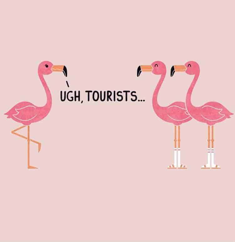 Flamingo Symbolism
