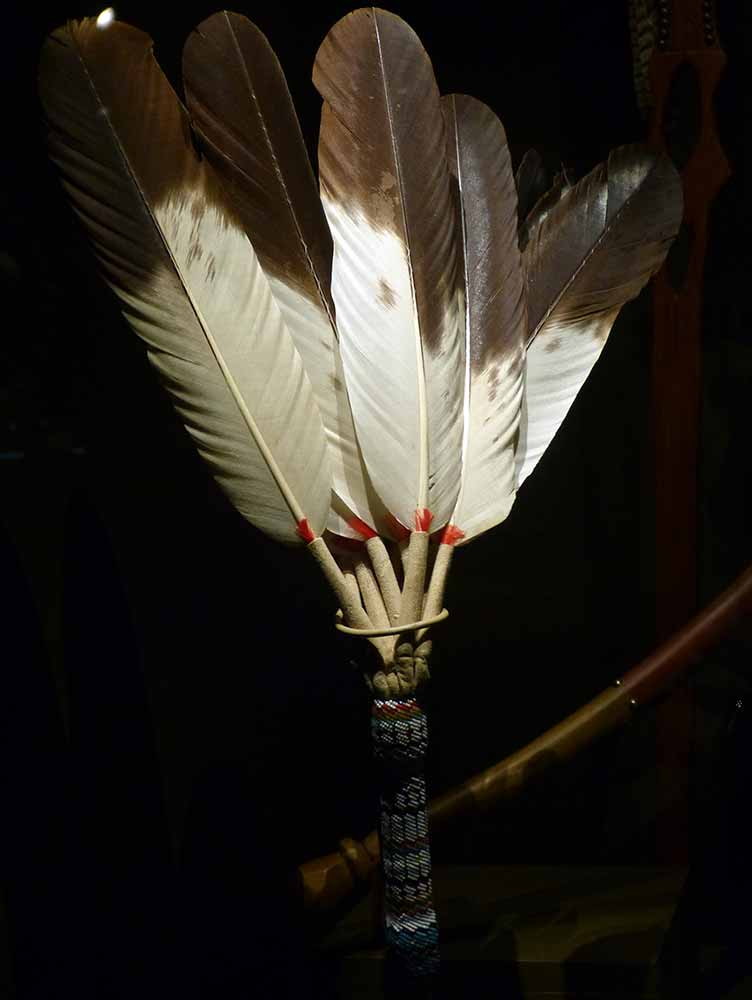 Eagle Feather Native American culture_