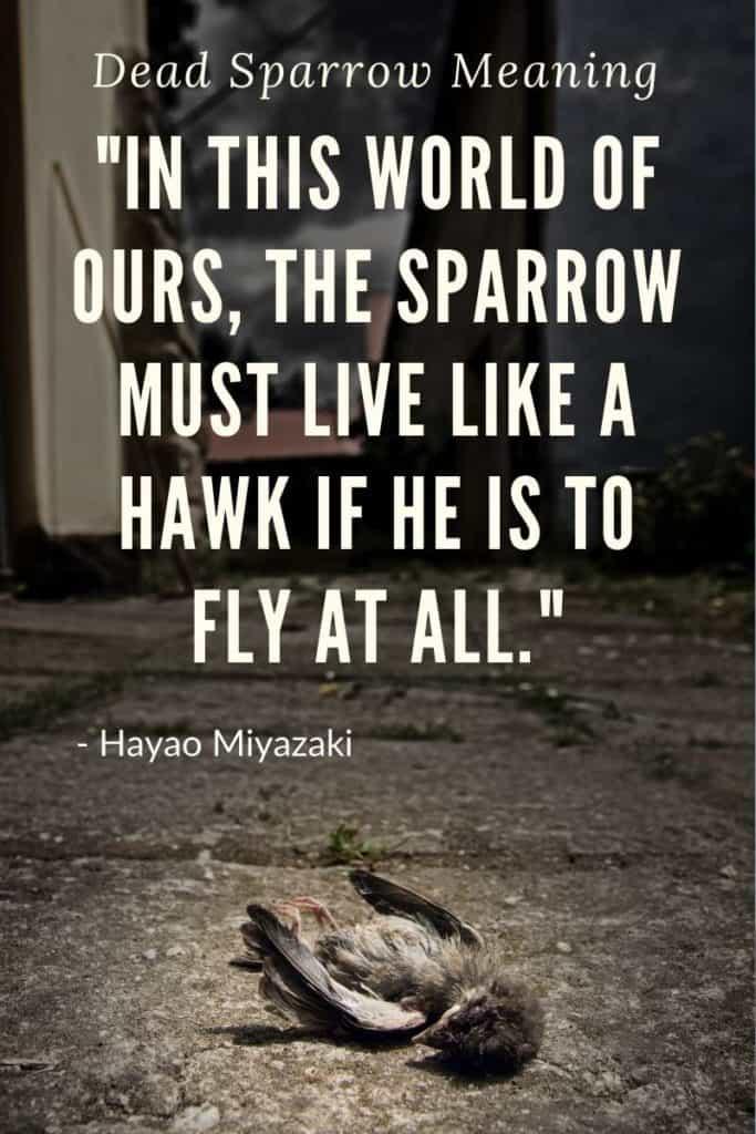 Dead Sparrow Symbolism