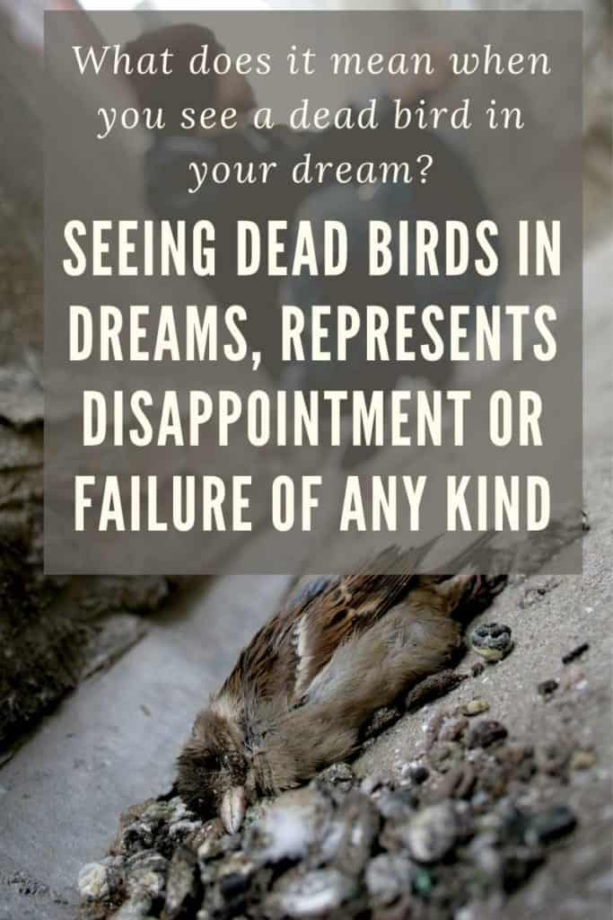 seeing dead birds in a dream
