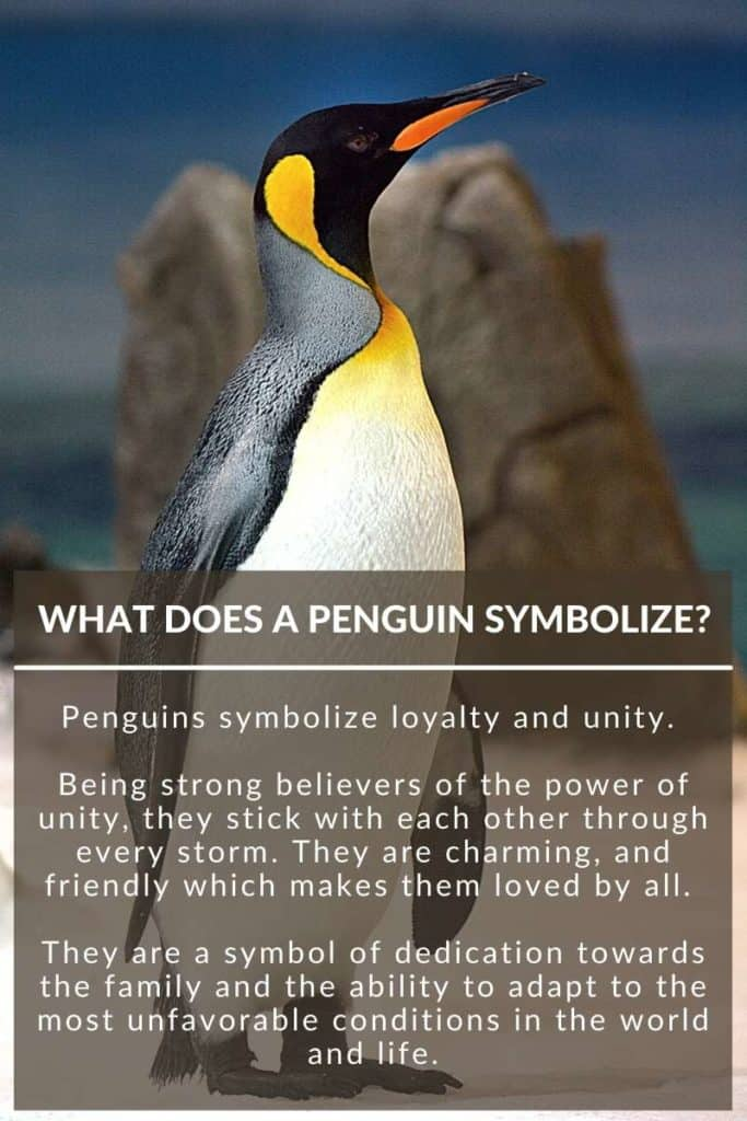 what does a penguin symbolize