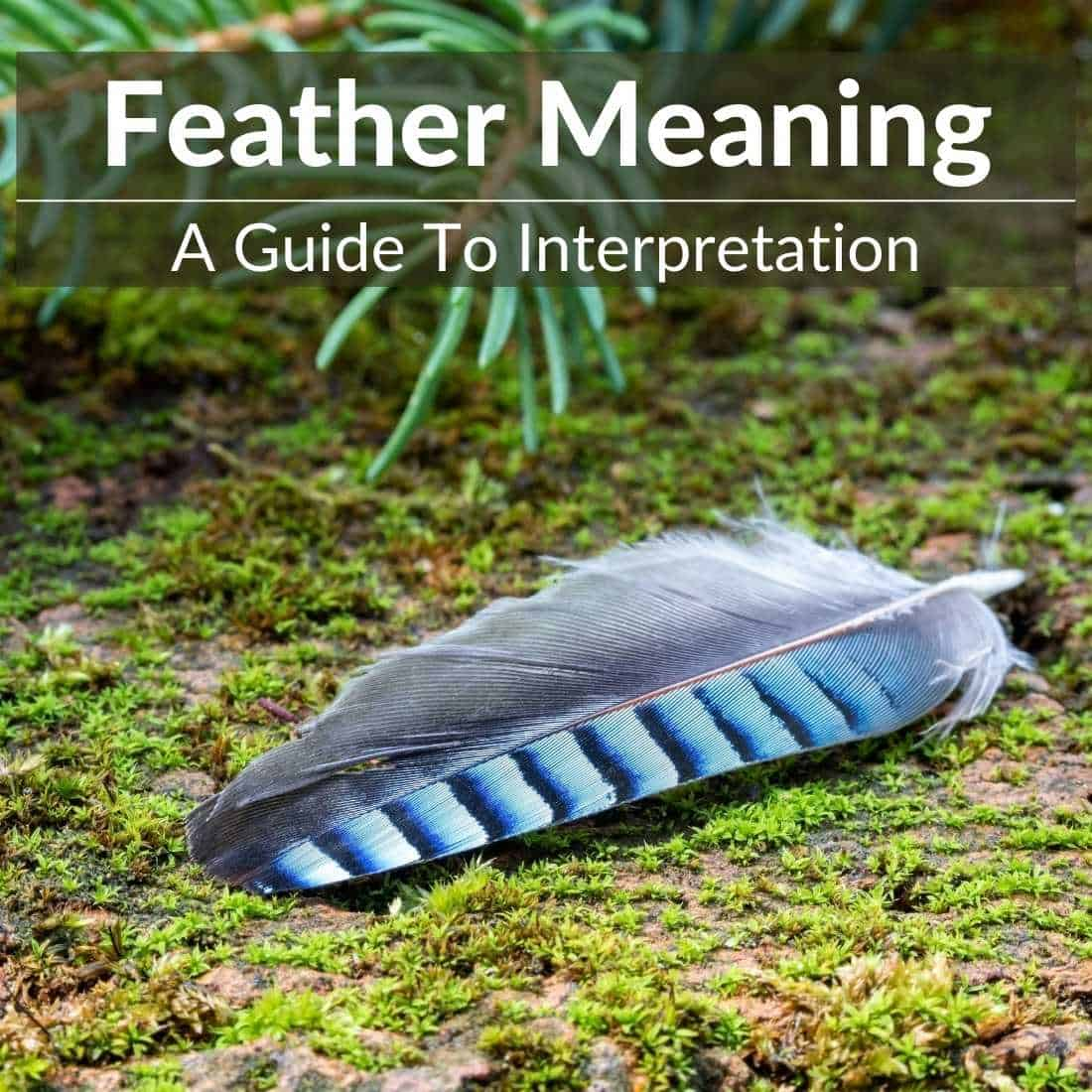 feather meaning and symbolism