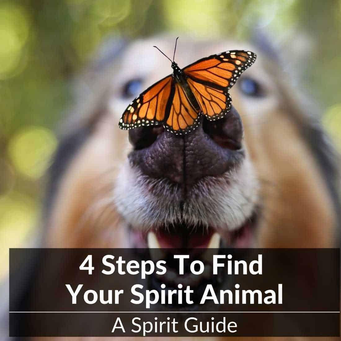 steps to find spirit animal