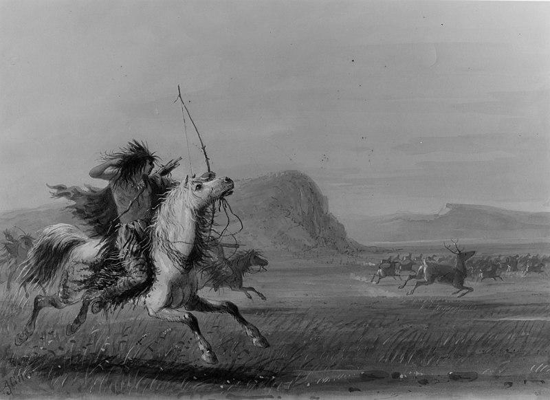 Elk symbolism in Native American culture