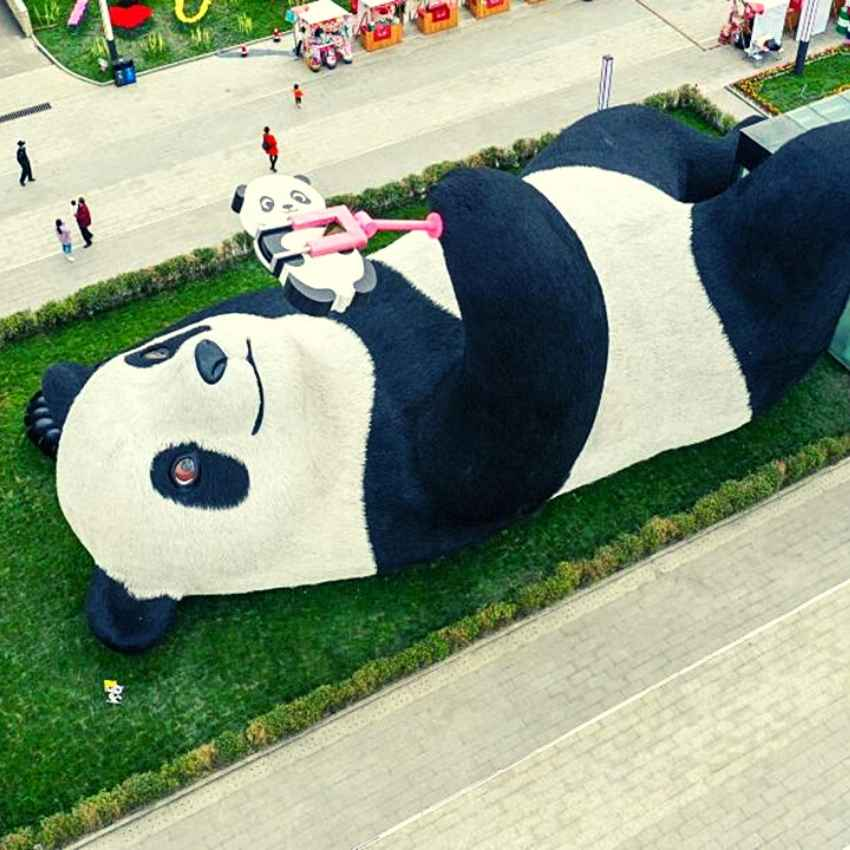 Symbolism of the Panda in China