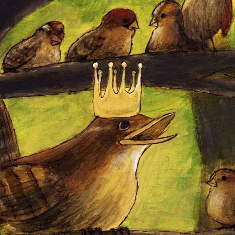 Wren King Of Birds