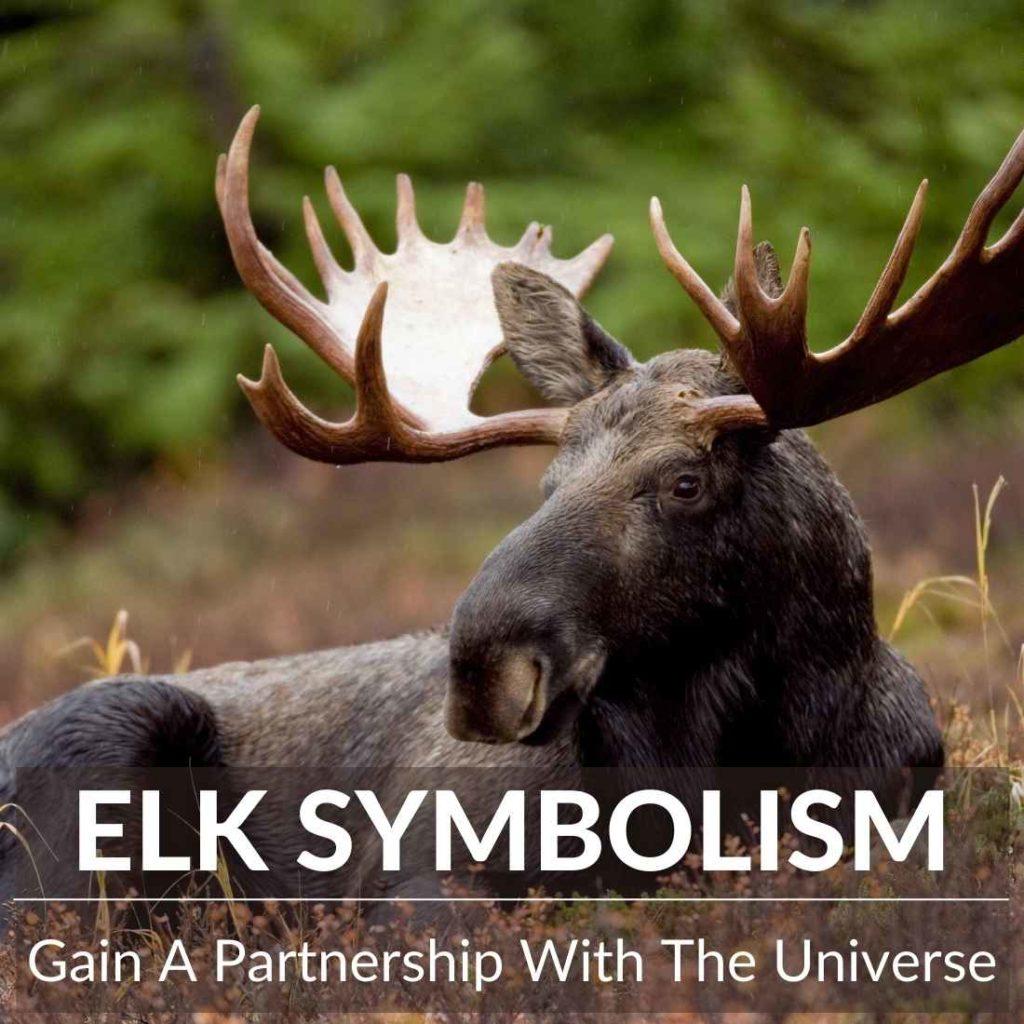 elk symbolism