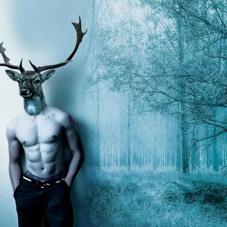 stag in dreams